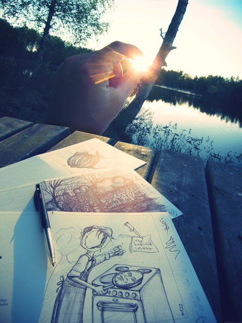 sun_covers